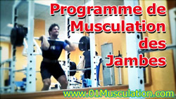 Programme Musculation Cuisses Quadriceps